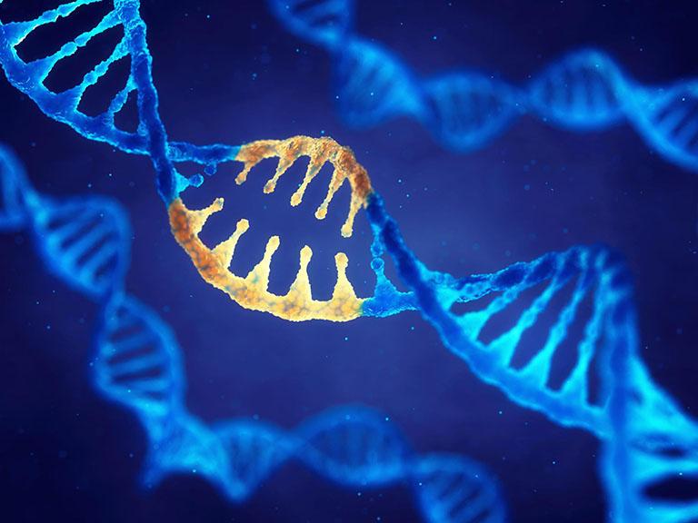 viêm da cơ địa di truyền