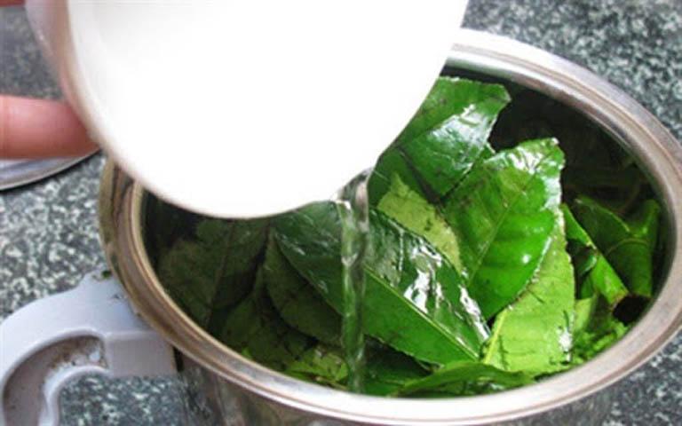 Nấu nước lá chè xanh dùng để tắm giúp cải thiện tổn thương trên da
