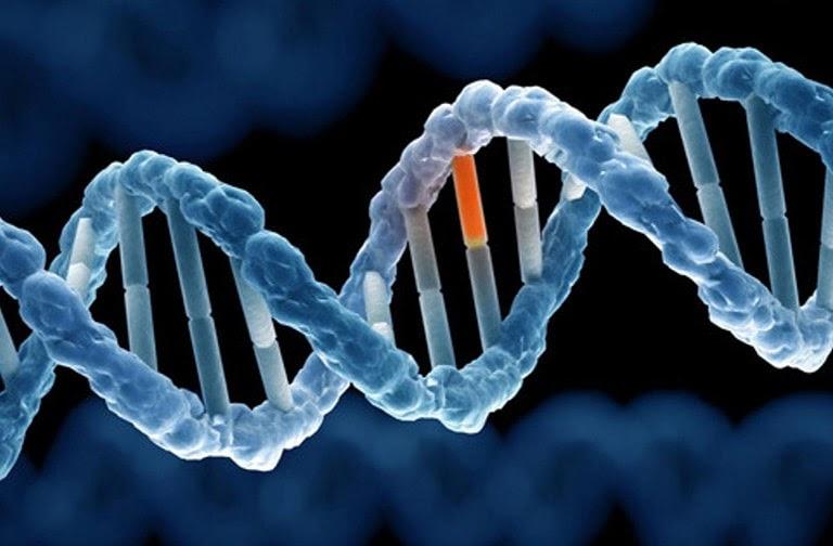 Nổi mề đay khi trời lạnh có thể bị ảnh hưởng do gen di truyền
