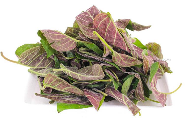 Lá mơ lông là loại rau ăn tốt cho bệnh nhân bị chứng trào ngược dạ dày thực quản