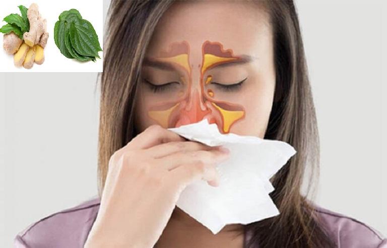 Người bệnh hoàn toàn có thể sử dụng các cây thuốc xông trị viêm xoang tại nhà