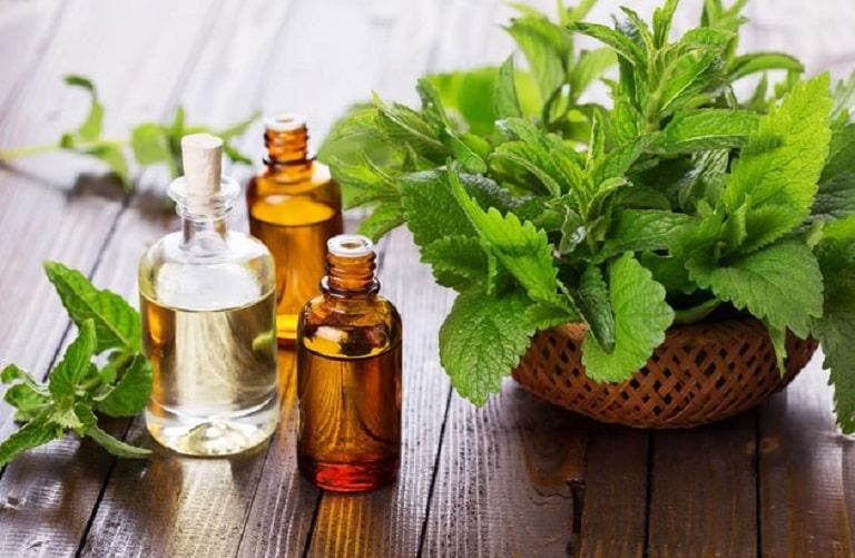 Tinh dầu bạc hà chữa các hoạt chất kháng viêm, diệt khuẩn cực tốt giúp giảm triệu chứng viêm xoang hiệu quả