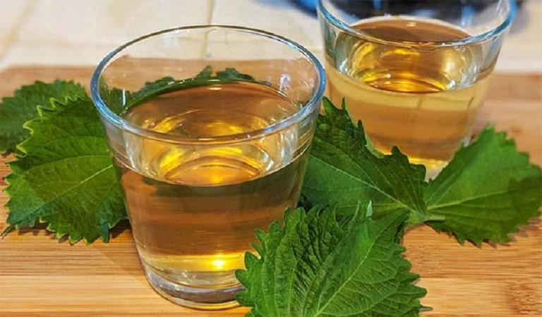Chữa viêm họng bằng lá tía tô pha trà được nhiều người áp dụng thành công