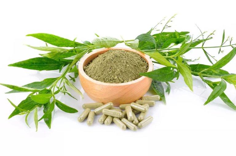 Dược liệu được sử dụng rộng rãi trong các bài thuốc YHCT
