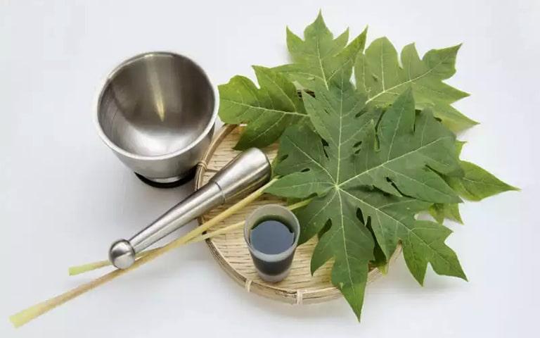 Chữa viêm họng bằng lá đu đủ là một phương thuốc được nhiều người bệnh tin tưởng áp dụng
