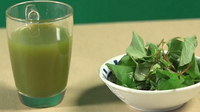 Uống nước lá diếp cá giúp giảm nhanh triệu chứng đau họng