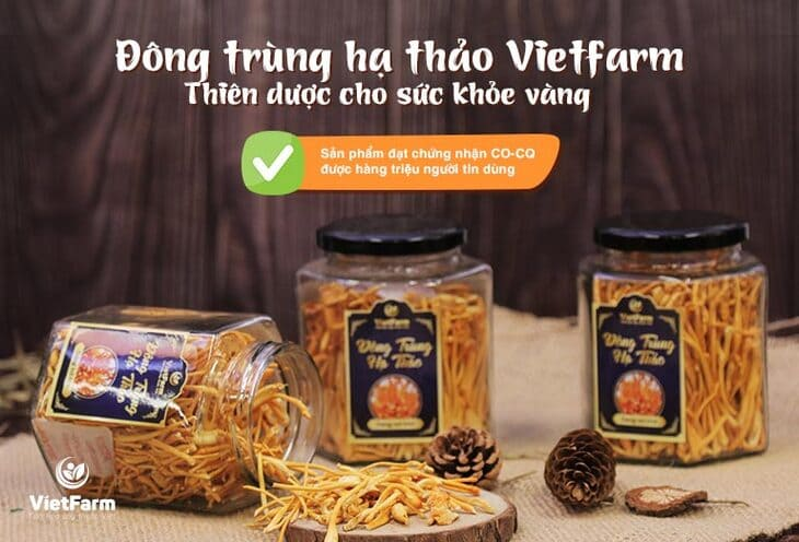 Sản phẩm Đông trùng hạ thảo sấy khô Vietfarm
