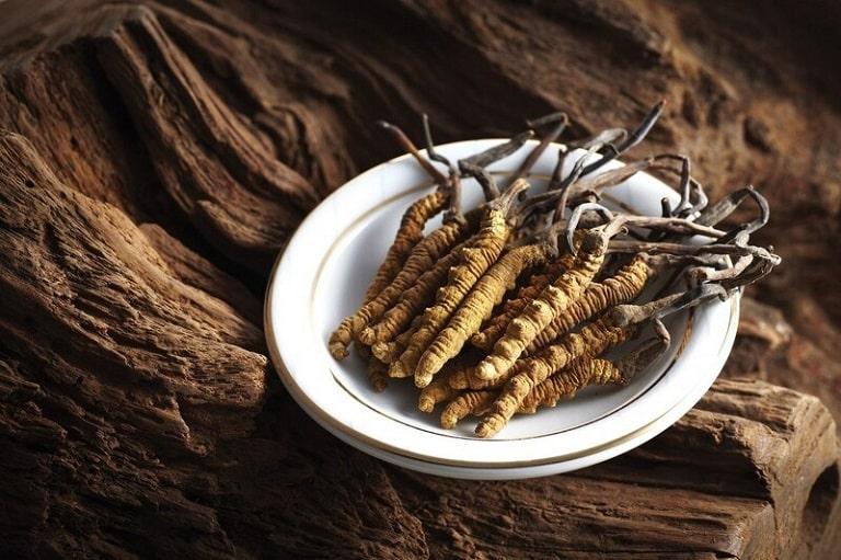Đông trùng hạ thảo là dược liệu nổi tiếng, được phân loại thành nhiều dạng khác nhau