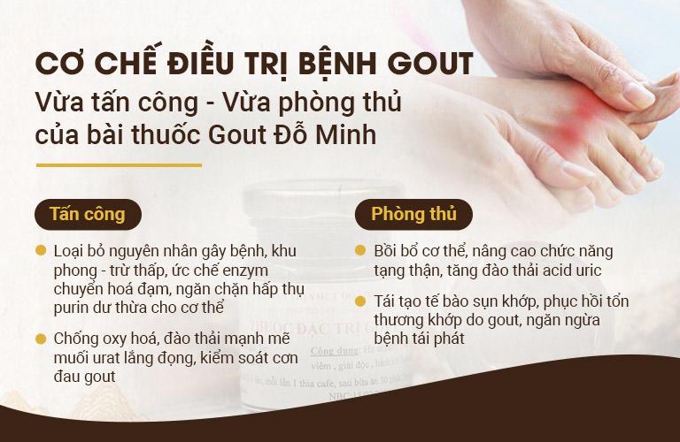 Cơ chế điều trị của bài thuốc Gout Đỗ Minh