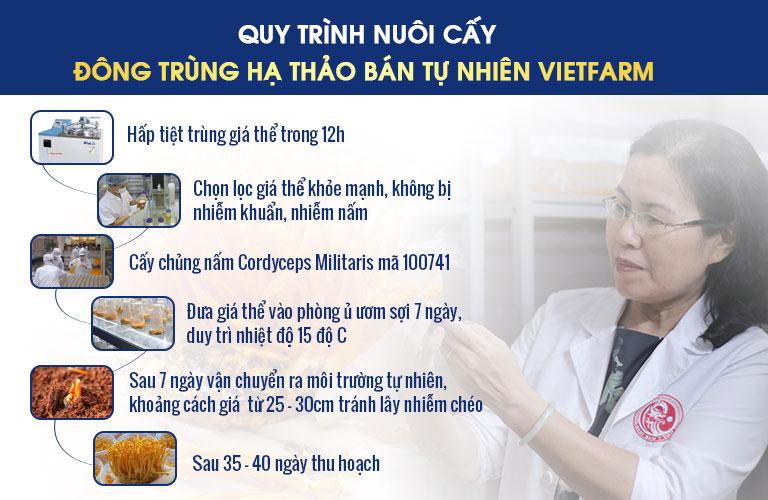 Quy trình 6 bước sơ bộ nuôi cấy Đông trùng hạ thảo bán tự nhiên Vietfarm