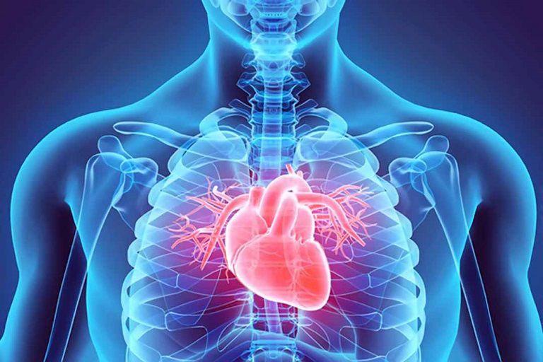 Người bệnh nên kiểm soát tốt các bệnh về tiểu đường, tim mạch và gan thận để phòng tránh bệnh gout